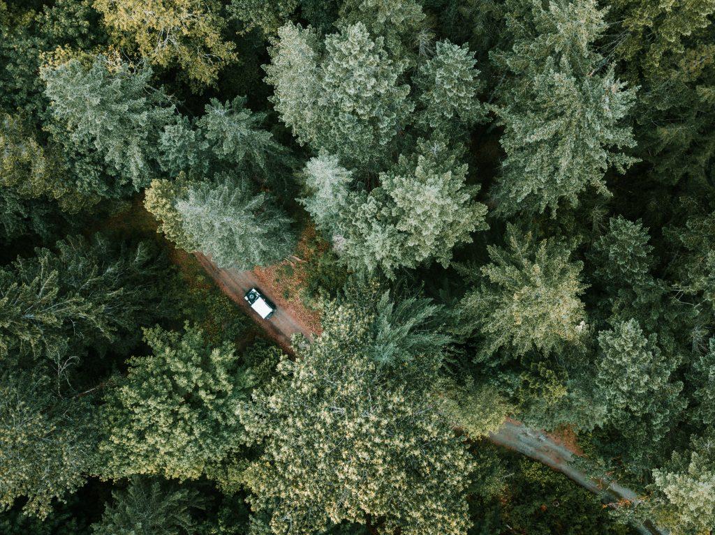 autolevi car rental estonia latvia finland